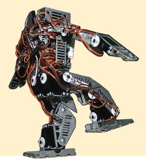 رباتیک روبوفا